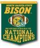 Rafter Banner - 2011 - 2012 NCAA FCS Football Champions