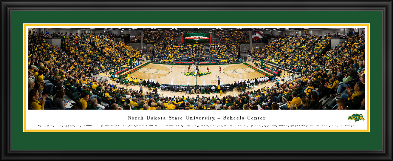 Panoramic Picture - Basketball 2016 Deluxe