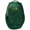 Cover Image for Under Armour Undeniable Sackpack - NDSU Green