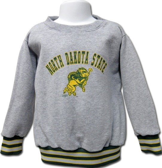 Image For Crew Sweatshirt - Toddler by Third Street (3T only)