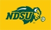 Cover Image for Rug - NDSU Bison