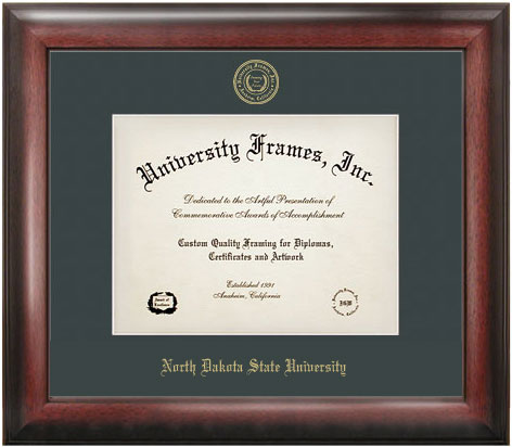 Cover Image For Diploma Frame - Satin Embossed